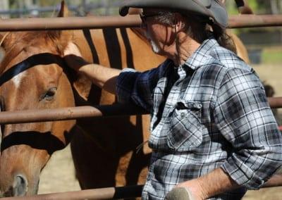 rsz_Terry petting Henry thru corral