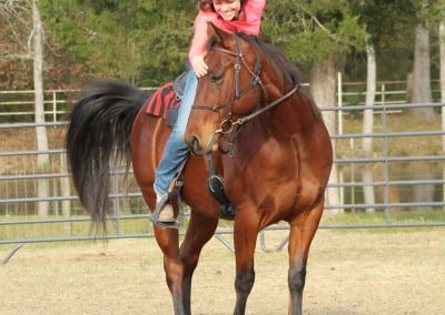 rsz_horsemanship_class_5