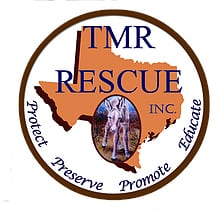 tmr-logo-v2